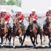 The Mounted Patrol performs the charge at the end of the Musical Ride.