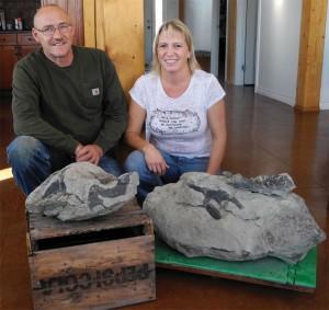 Plourdes fossil