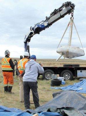 A crane was used to load the roasting pit, encased in plaster, burlap and foil, onto a truck for transport to the Royal Alberta Museum.